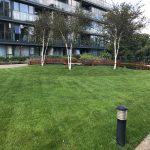 Apt. 38 Larkspur Hall, Levmoss Park, The Gallops, Sandyford, Dublin 18